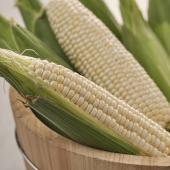 北海道牛奶玉米(2.5斤/箱)請勿跟其他商品一起下單